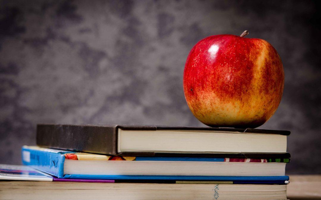 Il Valore Dell'Insegnante